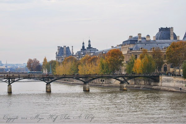Paris In the Fall Tree lined streets