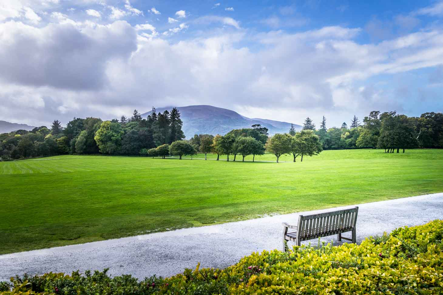 Bench with a view of Muckross Lake to the side of Muckross House