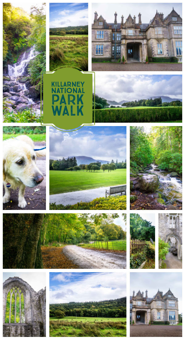 Killarney National Park Walk to the abbey, and the waterfall